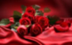 roses-wide-desktop-background.jpg