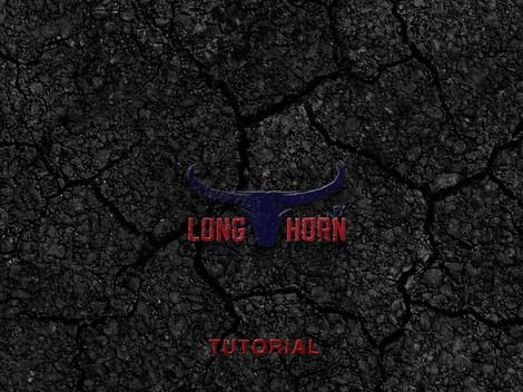 Longhorn Forex trading logo animation .