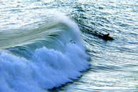 xTc Surf 1_01.jpg