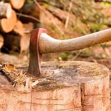 Brennholz rüsten