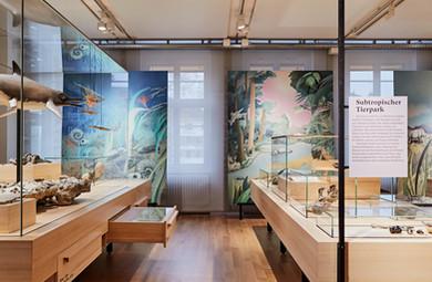 Naturmuseum Olten