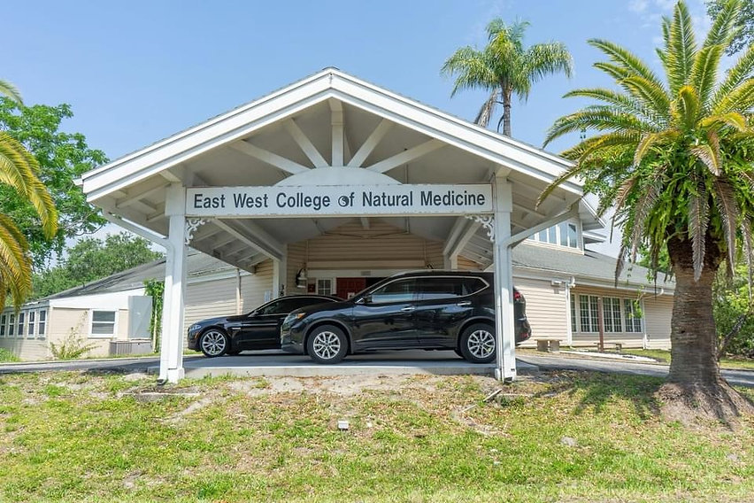 East west college natural medicine new p