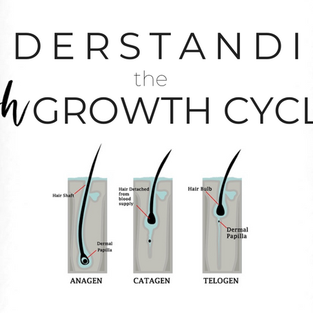 Understanding Your Lash Growth Cycles