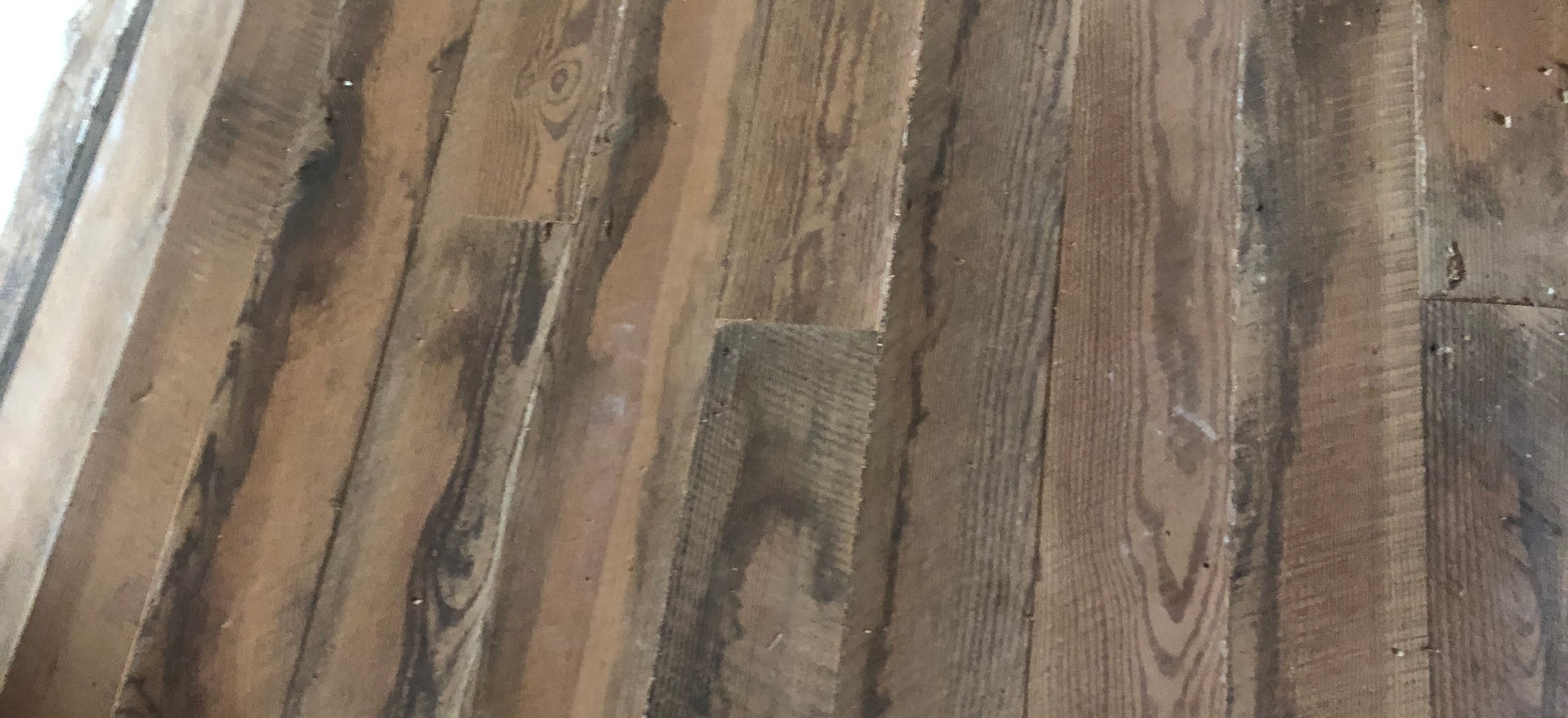 Cabin floor restoration, August 13, 2020