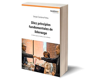 Diez principios 3D_libro.jpg