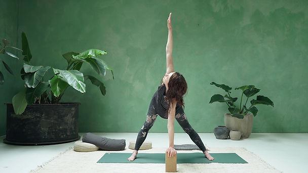 Prenatal Yoga with Kasia Pokrop.jpg
