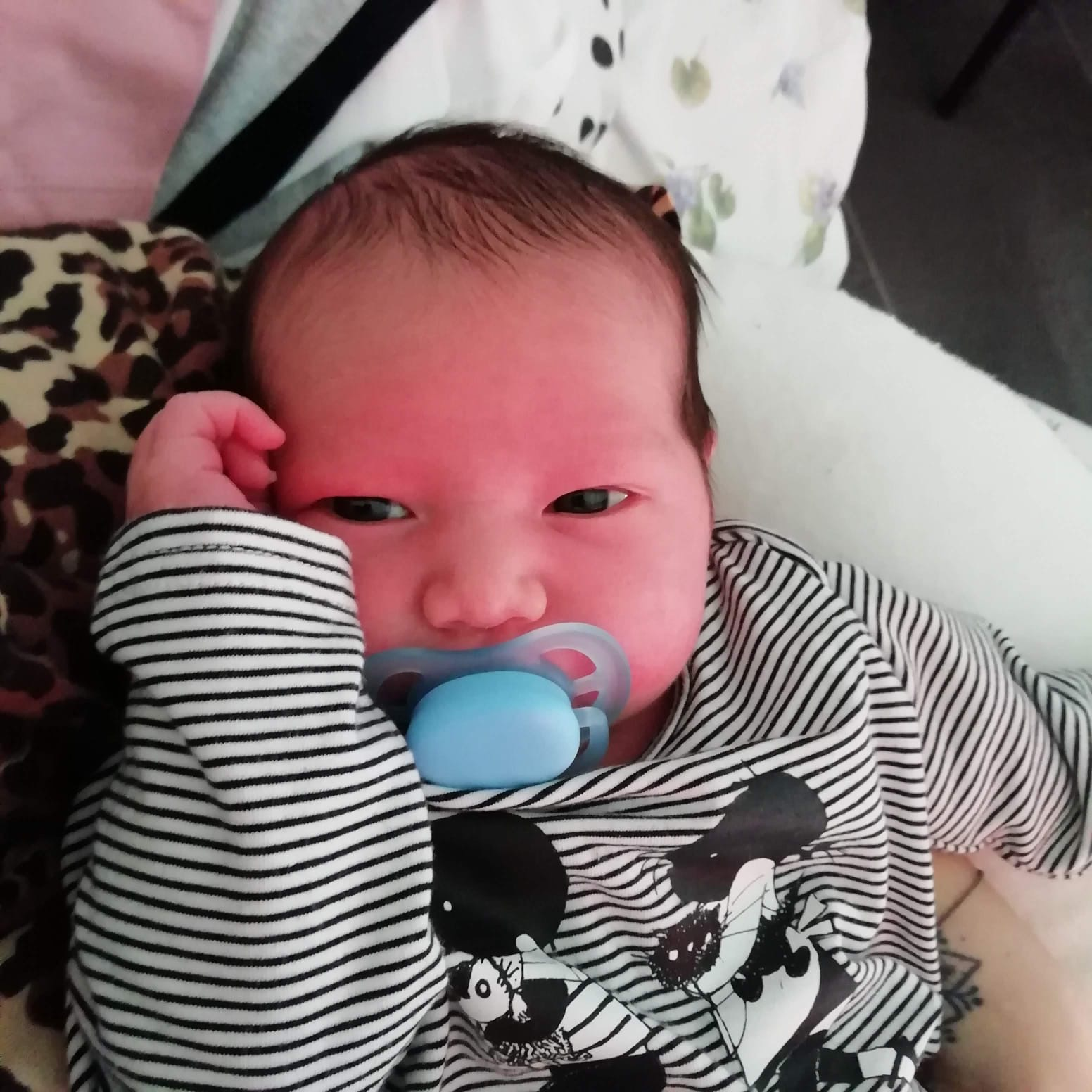 Mamamoon baby - Eddie