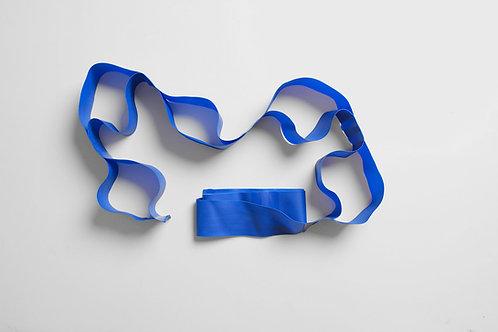 Blue Exercise Theraband