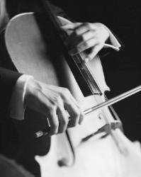 Tocar um Instrumento - Inegável Privilégio