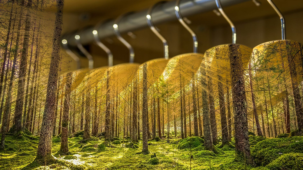 Textile Industry Sustainability