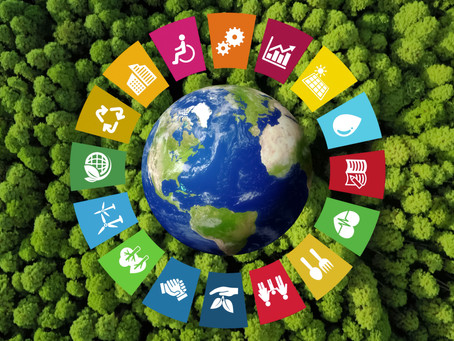 Supply Chain Sustainability: An Imperative of the New-Normal Supply Chain