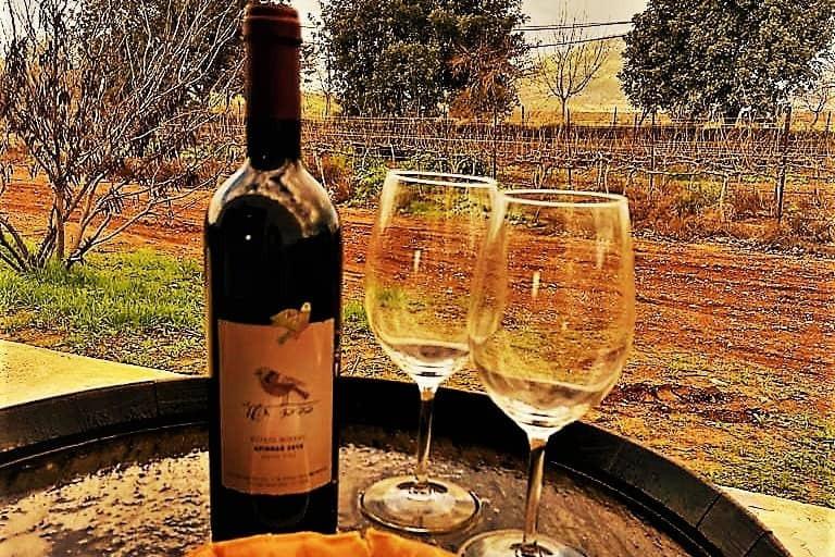 ליד ג'חנון התבור תמצאו את יקב כרם תשע. יין נפלא ומקומי שאפשר לקנות במקום וכן לסייר ולטעום בתשלום ובתיאום מראש.