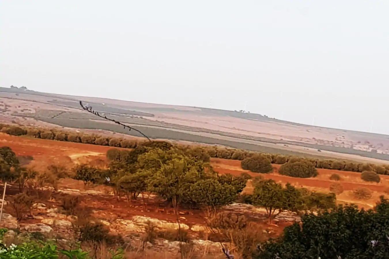 """קיץ.הגליל התחתון המזרחי נקרא גם """"הנגב של הגליל """" ומרגש כל השנה. Summer time. Lower Eastern Galilee is also called """"The Desert of Galilee """". Exciting all year long"""