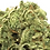 Thumbnail: Gorilla Glue - Earthy - Pine - Pungent - Phase 3 Flowers