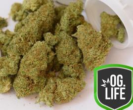 Sour Tangie - OG.Life - cannabis marijua