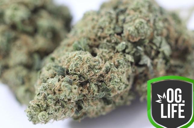 OG Diesel - OG.Life - cannabis marijuana