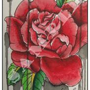 rosesample.jpg