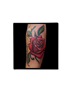 realistic rose.jpg