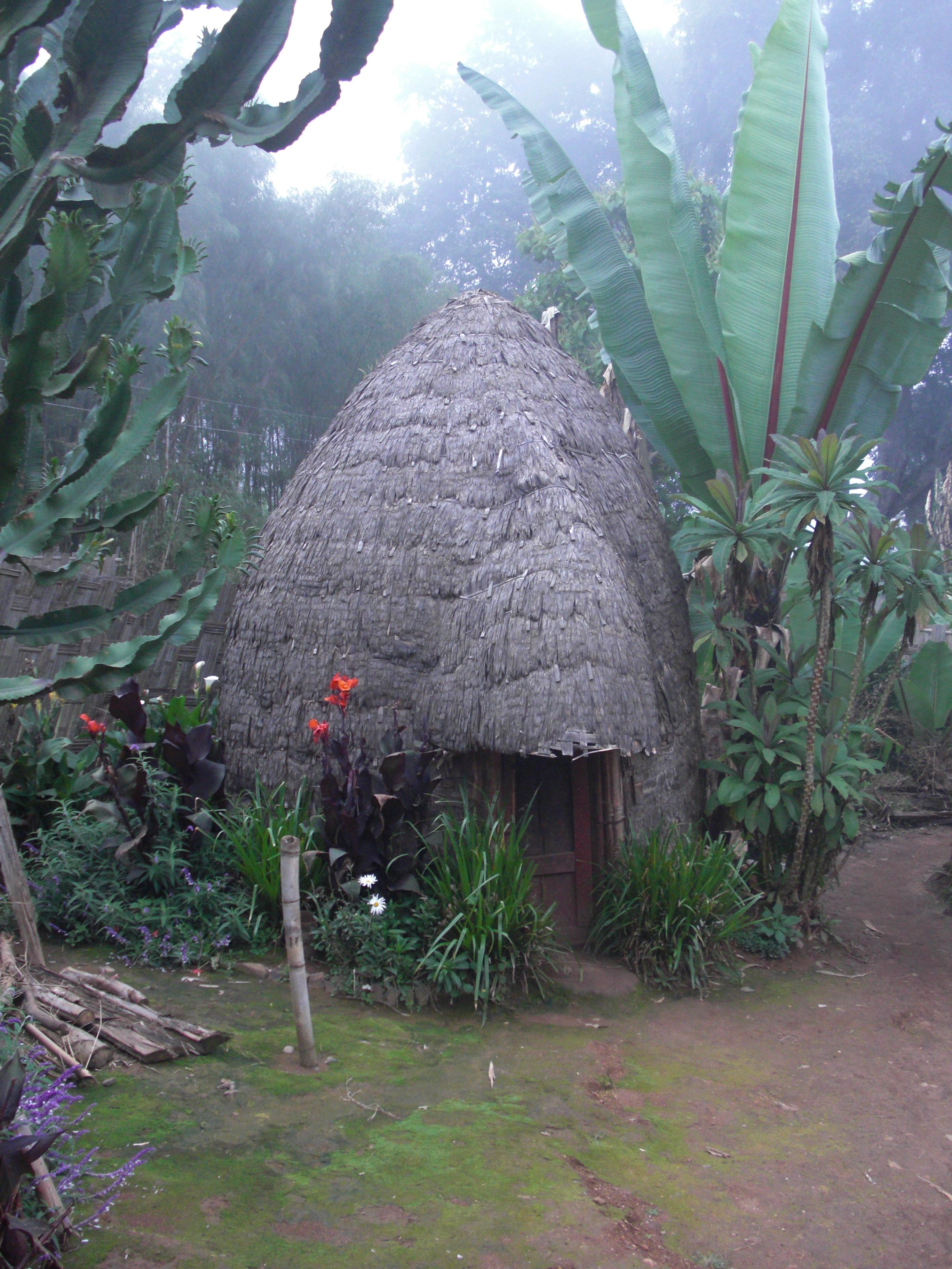 Elephant hut in Ethiopia