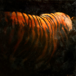 Tigerside
