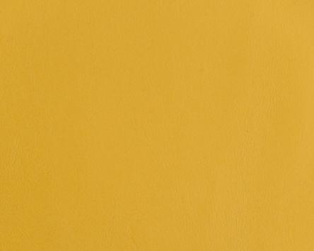 cordoba-mustard.jpg