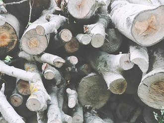 Spring Home Tip #6 - Firewood
