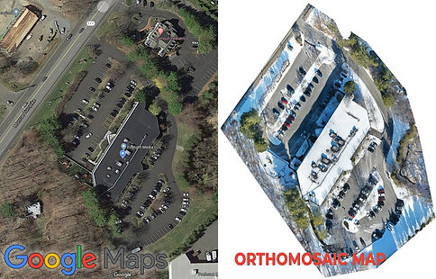 Google Vs Orthomosaic