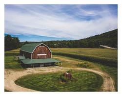 White Hollow Farms