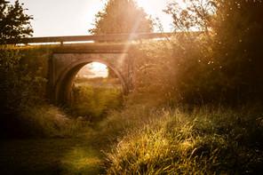 Den gamle bro | Baaring