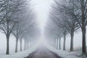 Lykkegårdsvej i vintertåge   Baaring