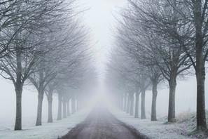 Lykkegårdsvej i vintertåge | Baaring