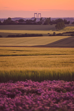 Solnedgang over Vestfyn | Strandgyden | Baaring