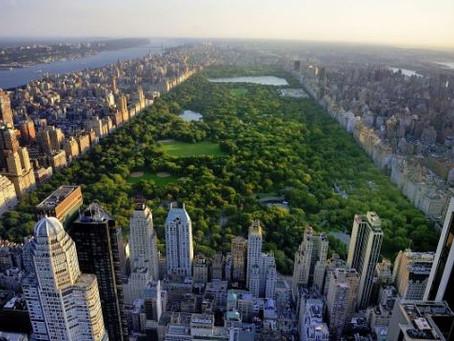 Building a Central Park for our kids
