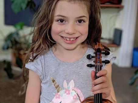 Violin teachers as economists