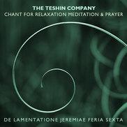 Teshin cover v8 500px.jpg