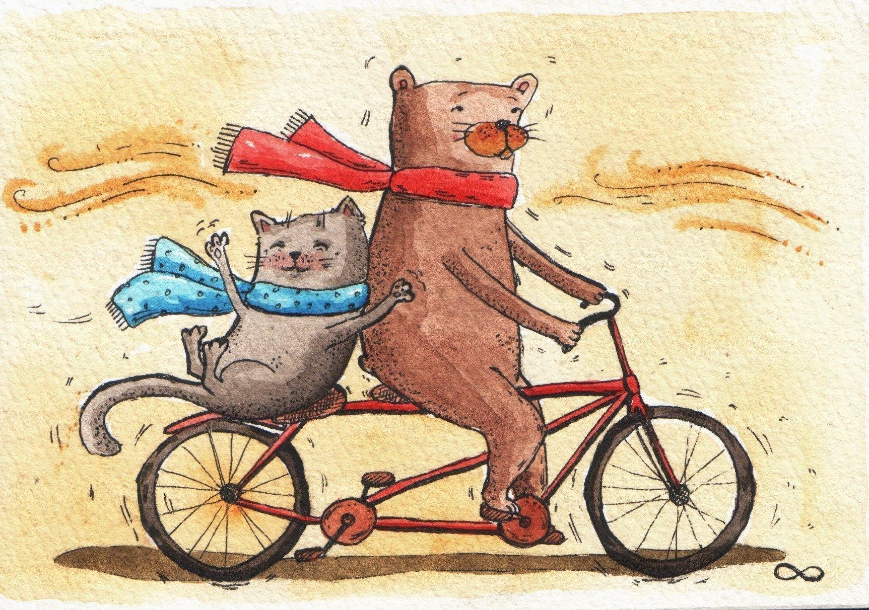 является медведь на велосипеде картинка балует его, подпевает
