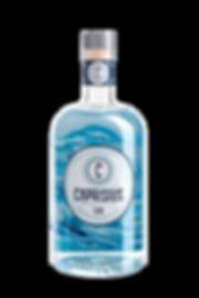 caprisius gin Capri