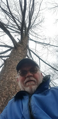 Tree at 18 Years.jpg