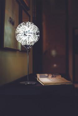 Coral Table Light(55cm)_Scenario Photo_01WEB