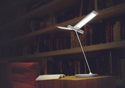 Seagull Table Light_Scenario Photo_1