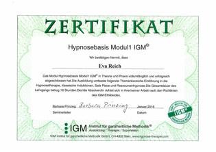 Zertifikat Modul 1