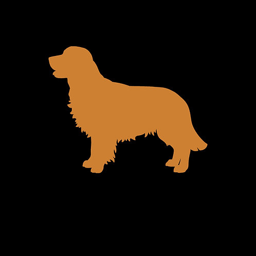Canine Bronze Photoshoot