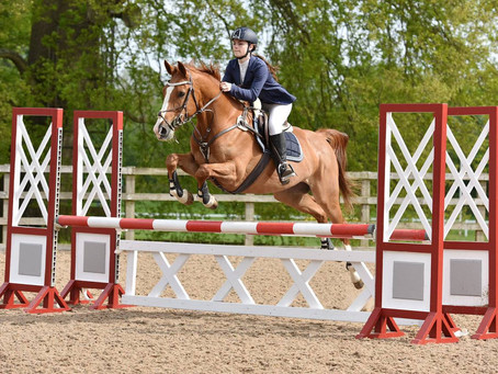 How To: Photograph Horses in Action (Part One)