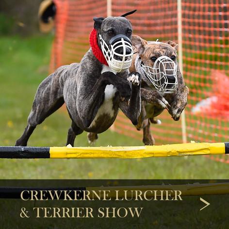 Crewkerne Lurcher.jpg