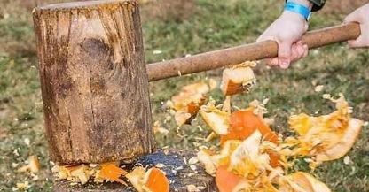 Pumpkin destruction day.jpeg