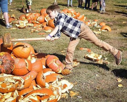 pumpkin destruction day 2.jpeg