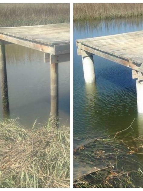 Deteriorating pilings get new life
