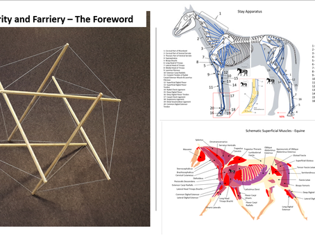 Bio-Tensegrity and Farriery - The Foreword
