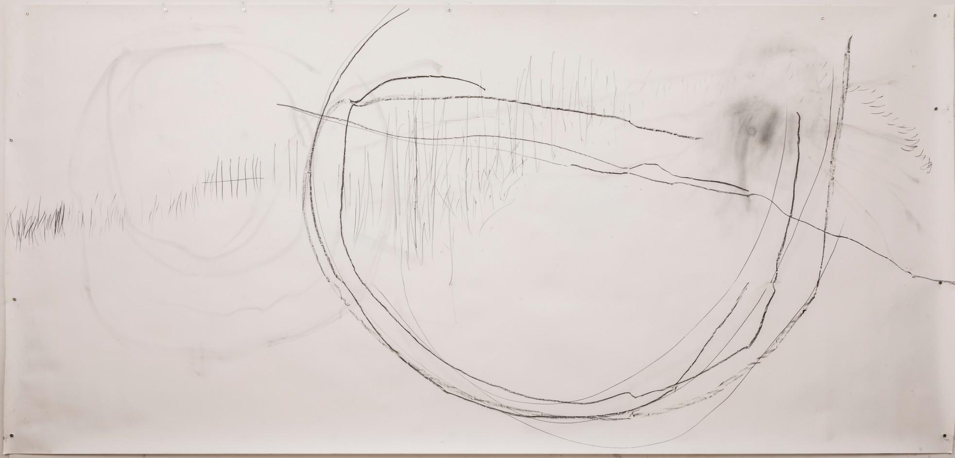 154 x 320 cm grafite, lapis conté sobre papel foto: Ruy Teixeira