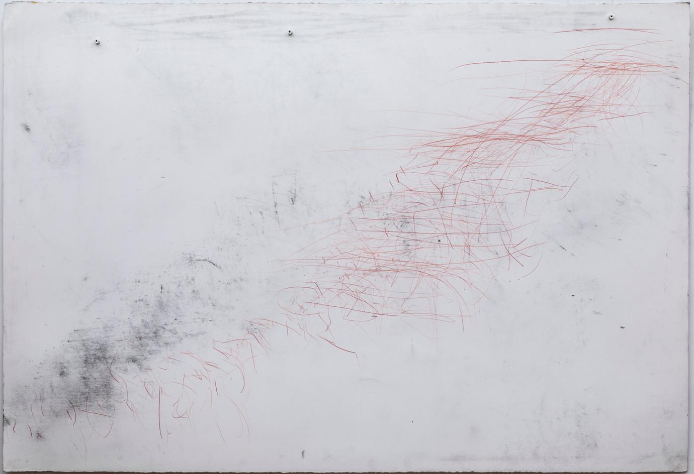 104 x 152 cm lápis dermatográfico, giz pastel seco sobre papel foto: Ruy Teixeira